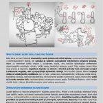 Katalóg adaptačných opatrení - súhrn pre politických predstaviteľov
